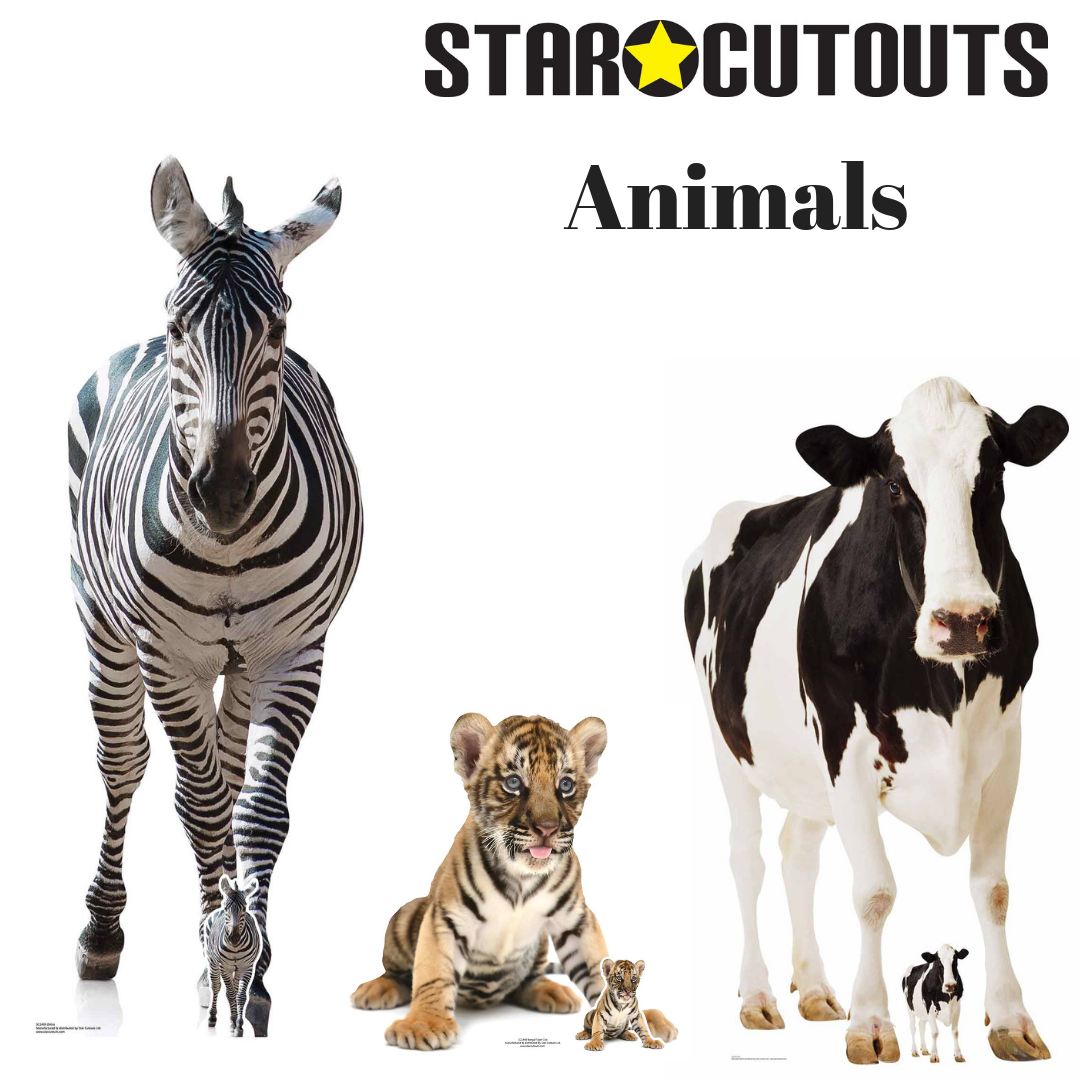 Animal Cardboard Cutouts Star Cutouts